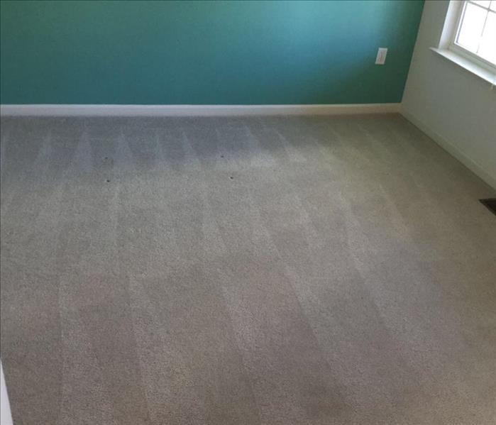 Residential Carpet Cleaning in Manahawkin, NJ After