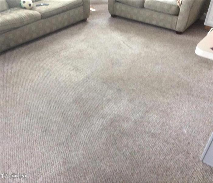 Residential Carpet Cleaning After