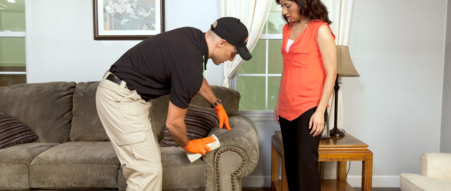Manahawkin, NJ carpet upholstery cleaning